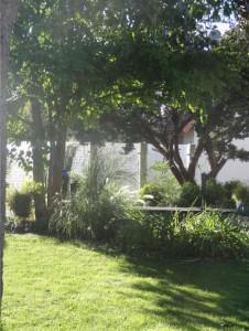 Sichtschutz-Lösung aus Granitstelen und hellen Plexiglasscheiben. Morgenzauber mit Sträuchern, Stauden und Gräsern im Morgenlicht