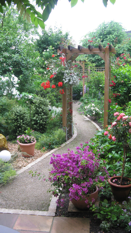 Ein kleiner, schmaler Reihenhaus-Garten, der ohne Rasen, nur mit Pflanzen gestaltet ist.  Torbogen und geschwungener Weg teilen den Garten ein.