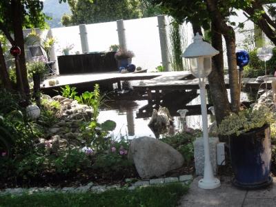 Koiteich mit spiegelndem Wasser, Holzsteg und unkonventionellem Sichtschutz