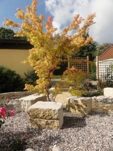 Kiesgarten mit Eyecatcher in Kirchzarten