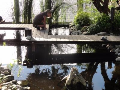 Gartenzauber aus spiegelndem Wasser,  schwebendem Steg und dem kleinen Mädchen