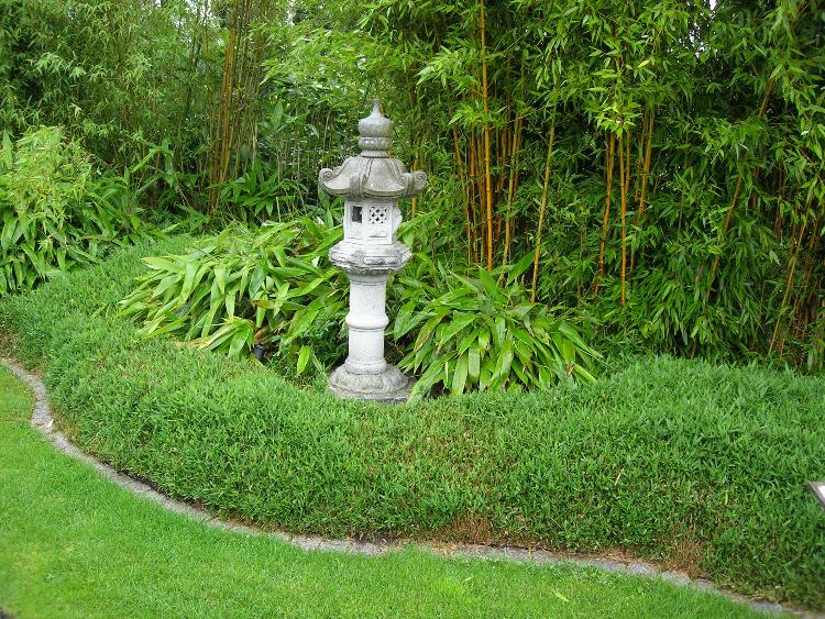Niedriger, Ausläufertreibender Bambus, mit scharfem Schnitt in Form gehalten. Steinlampe Japanisch
