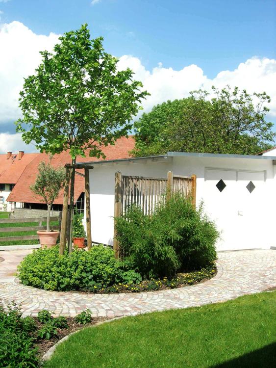 Terrassenoase, Hausbaum, Bambus und Sichtschutz in Kirchzarten. Gartenplaner Helmut Lamprecht